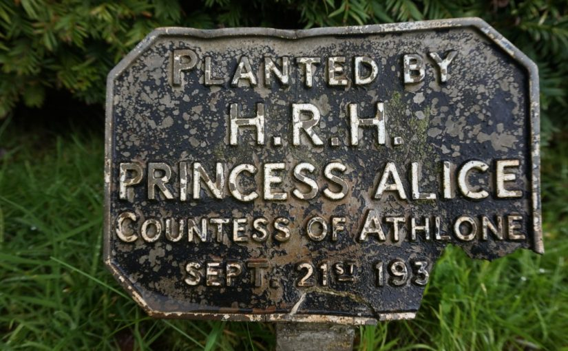 ROYAL PARTIES – TREE PLANTING TRADITION